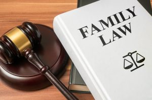 Family law binder with gavel